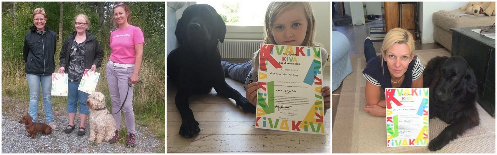 Kiva Koirakansalainen 2015